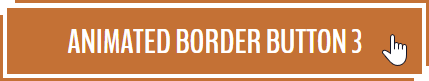 Animated Border Button Hover