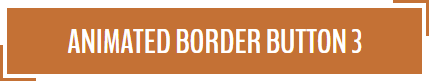 Animated Border Button